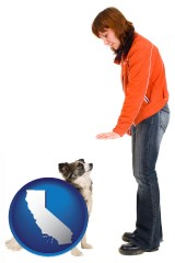 california map icon and a woman training a pet dog