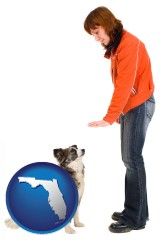 florida map icon and a woman training a pet dog
