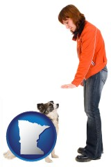 minnesota map icon and a woman training a pet dog