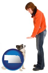 nebraska map icon and a woman training a pet dog