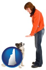 new-hampshire map icon and a woman training a pet dog