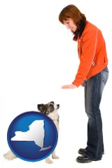 new-york map icon and a woman training a pet dog