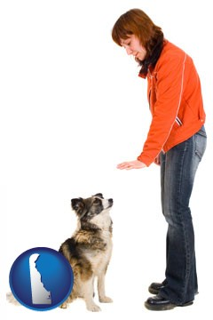 a woman training a pet dog - with Delaware icon