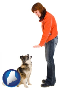 a woman training a pet dog - with Maine icon