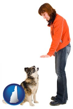 a woman training a pet dog - with New Hampshire icon